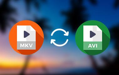 MKV to AVI Converter
