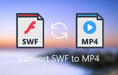 Convert SWF To MP4
